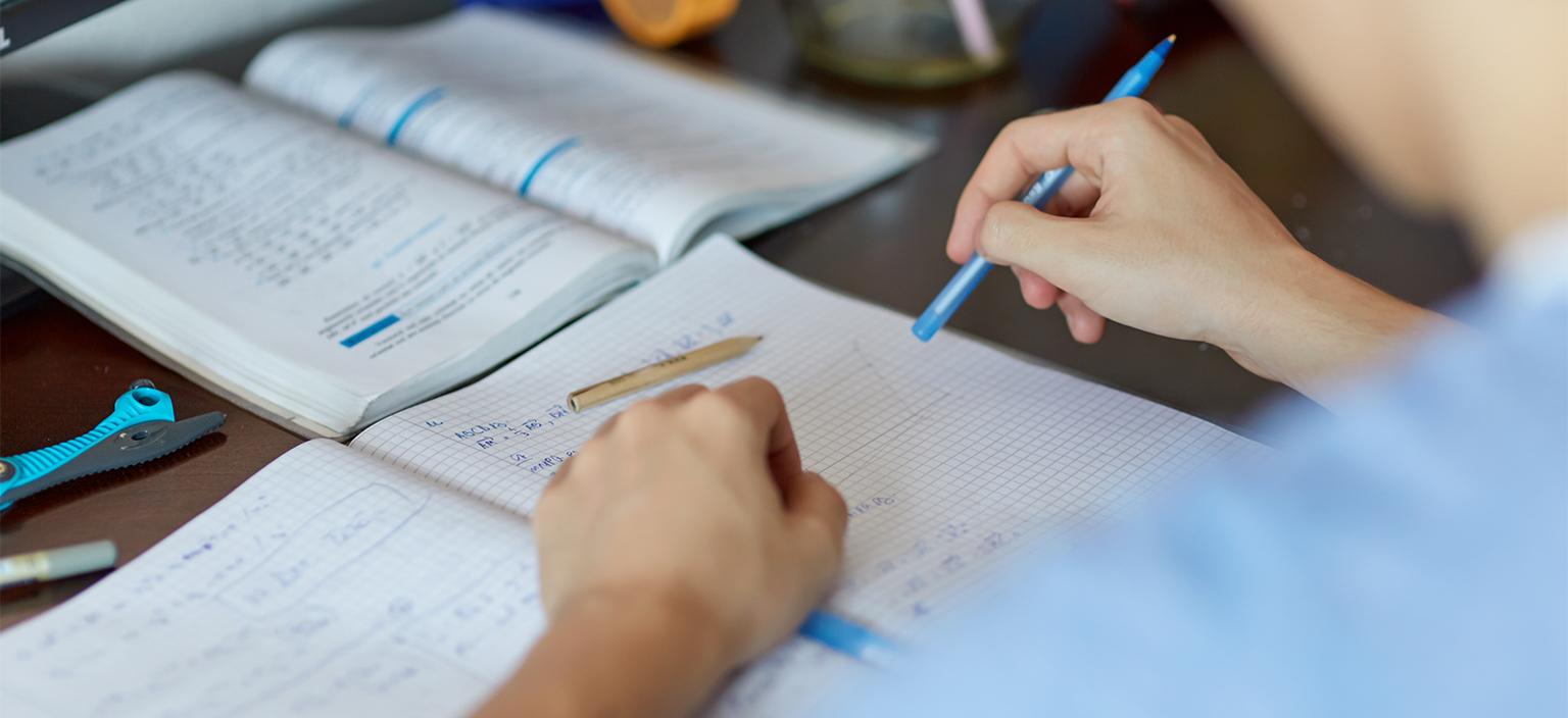 Homeworkhelp frida kahlo essay life