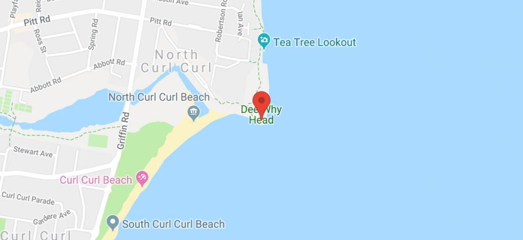 Map of Dee Why Headland