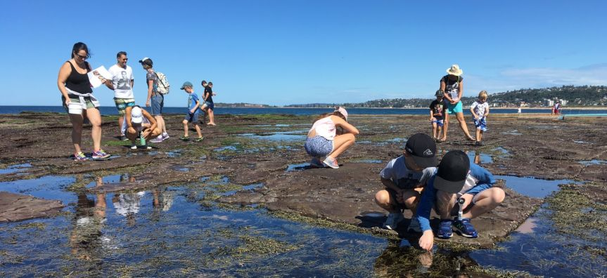 A group of people exploring the rock platform