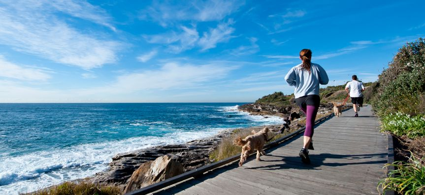 People walking their dogs on the South Curl Curl board walk