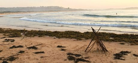 Dee Why Beach, ephemeral structure made from debris after a storm, 2020