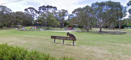 Woolgoolga Reserve Basketball Court